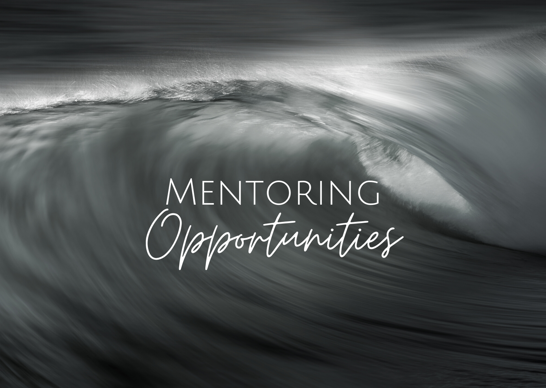 Conscious Business Mentoring Opportunities